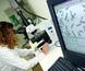 Salud recibe 52 solicitudes para la convocatoria de acciones para el refuerzo de la investigación con recursos humanos