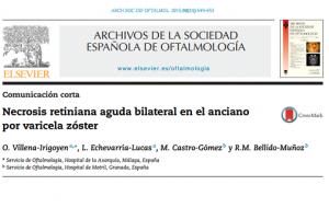 Villena-Irigoyen O, Echevarría-Lucas L, Castro-Gómez M, Bellido-Muñoz RM. Bilateral acute retinal necrosis due to varicella zóster virus in an elderly patient. Arch Soc Esp Oftalmol. noviembre de 2015;90(11):549-53.  PMID: 25817963