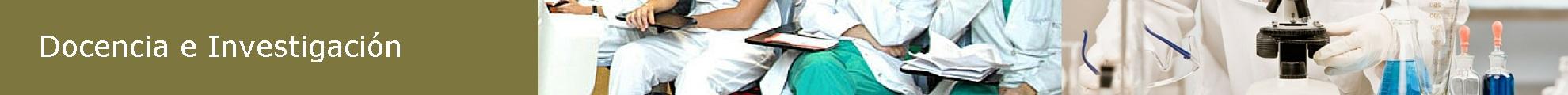 docencia e investigacion