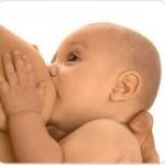 lactancia. seno materno