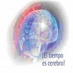 Ictus. Cerebro 22