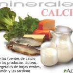 fuentes de calcio