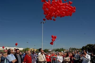 El ramo de globos se pierde en el cielo