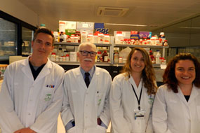 Investigadores efectos vitamina D