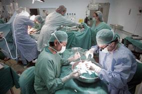 Imagen tomada durante la realización de un trasplante.