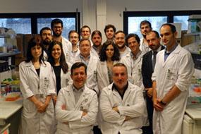 Investigadores del IMIBIC, Reina Sofía y UCO descubren nuevas dianas terapéuticas y marcadores para el diagnóstico del cáncer de próstata