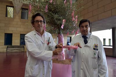 Los oncólogos médicos Juan de la Haba y Enrique Aranda