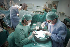 Imagen de archivo de trasplante