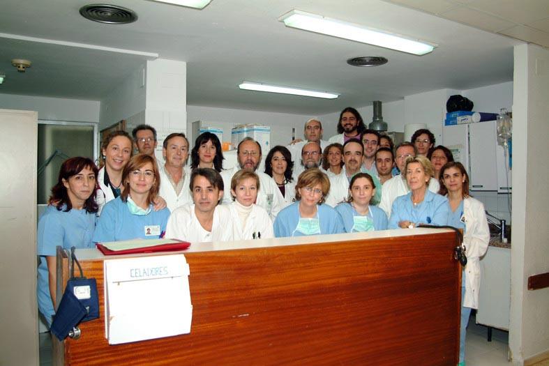 Profesionales de hematología. 2004