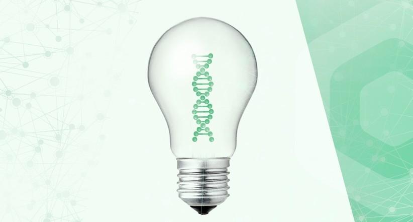 Rentabilizar la innovación