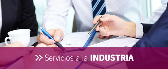 Servicios a la Industria