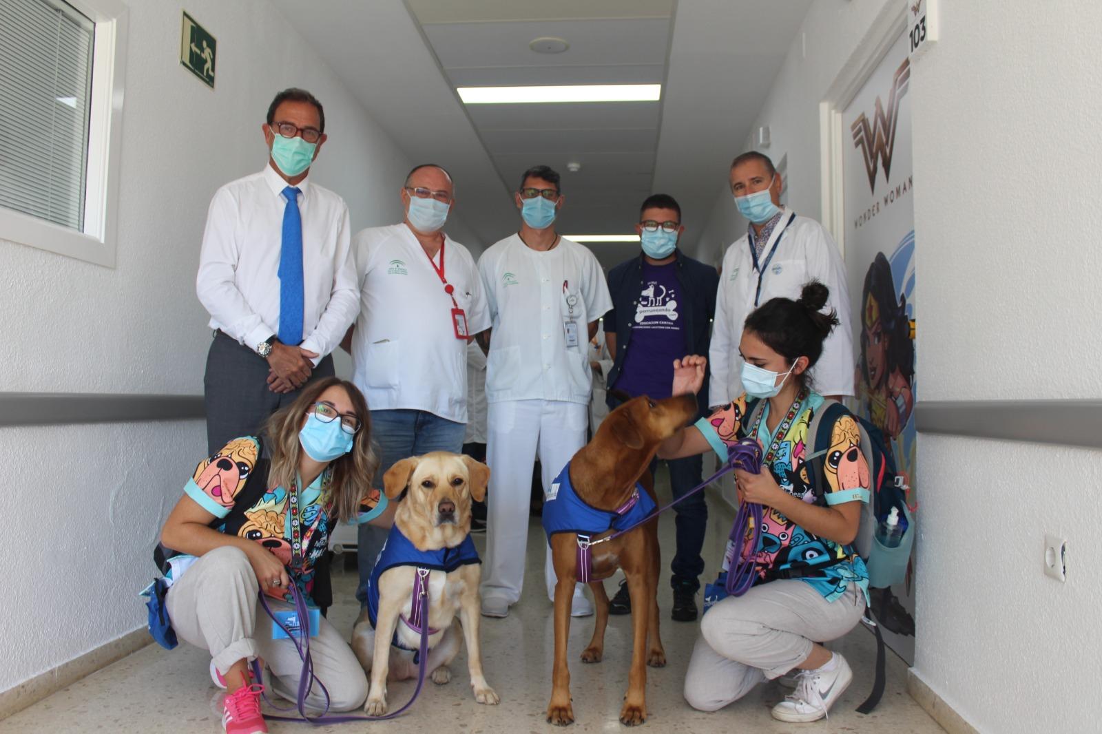 La unidad de Pediatría del Área Sanitaria Málaga-Axarquía dispondrá de Terapia Asistida con Perros