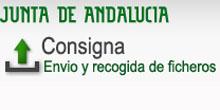 Logo Consigna