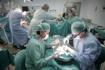 Imagen tomada durante la realización de un trasplante