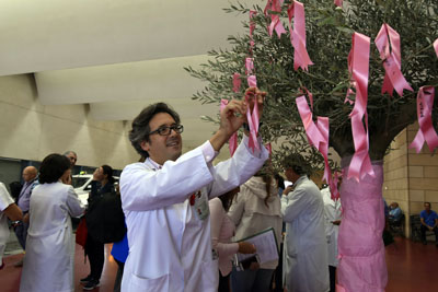 Juan de la Haba cuelga su lazo en el árbol rosa
