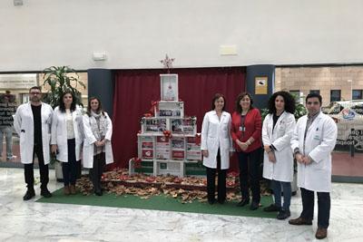 El Equipo de Dirección junto a uno de los árboles de Navidad del hospital