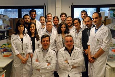 """En la foto, miembros del grupo """"Hormonas y cáncer"""" y de Innovación del IMIBIC."""