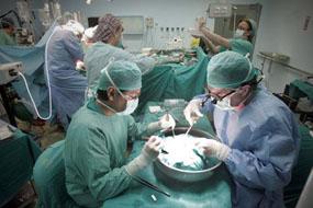Imagen de archivo de un trasplante