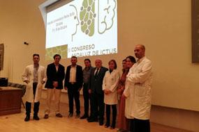 El consejero de Salud y Familias asiste al II congreso andaluz de ictus