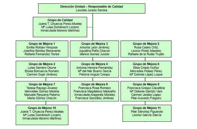 Organigrama del Servicio de Esterilización