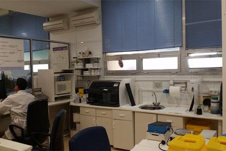 Histocompatibilidad e Inmunología del trasplante: post-PCR