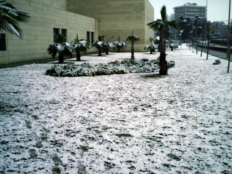 El hospital nevado. 2004