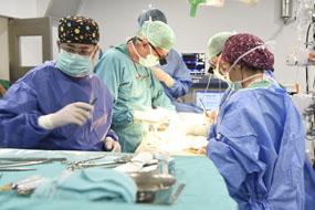 Imagen archivo de un trasplante hepático
